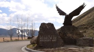 Kathryn Turner on the Arts in Jackson Hole – #JHREAlifestyles