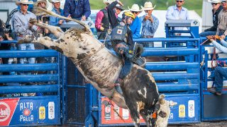 Jackson Hole PBR Happening Tonight