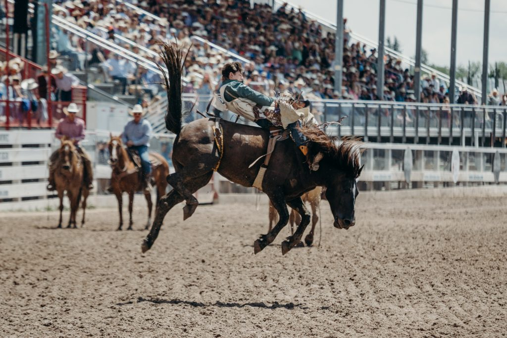 A bronc rider holds on as spectators look on