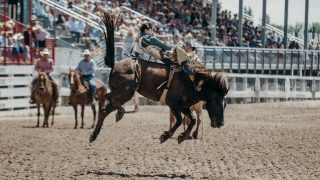 The Economy of Rodeo